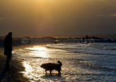 Kiel - Mädchen mit Hund am Strand
