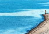 Stohl - Reiter am Strand