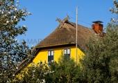 Heiligenhafen - auf Graswarder 4
