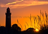 Leuchtturm Neuland 7