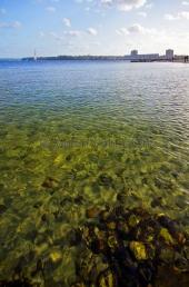 Kiel - klares Fördewasse in Strande