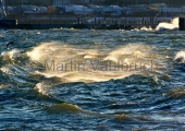 Kiel - chaotischer Seegang in Strande