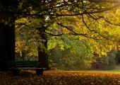Herbst in der Forstbaumschule 5