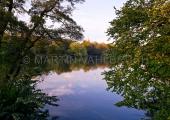 Herbst im Schrevenpark 1