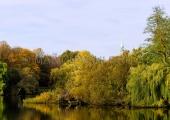 Herbst im Schrevenpark 2