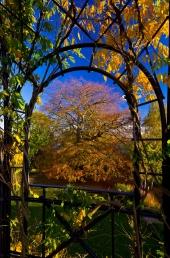 Pavillon im  alten botanischen Garten  4