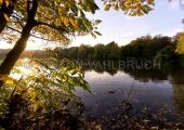 Herbst im Schrevenpark 9