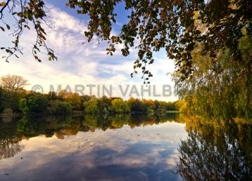 Herbst im Schrevenpark 10