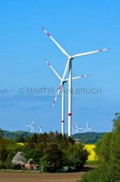Windmühlen bei Sehestedt