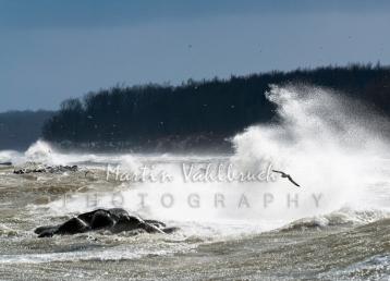 Sturm an der Ostsee 2