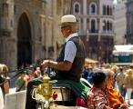 Wien - Fiaker am Steffl